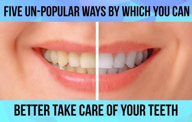 comparison of teeth